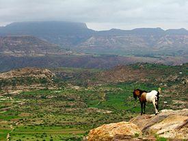 275px-Ethiopian_highlands_01_mod